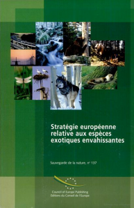 strategue_UE2